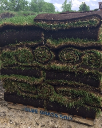 Blue Grass Sod Producers Ltd - Landscape Contractors & Designers - 204-269-3052