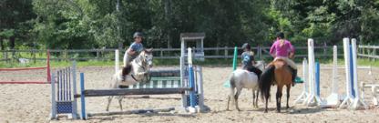Greystone Equine - Écoles et cours d'équitation - 514-569-9762