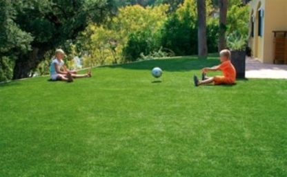 Grassroots Liquid Lawn Care - Lawn Maintenance - 250-578-8383