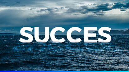 WizeBA - Business Management Consultants
