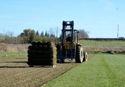 Queensville Sod Farms Limited - Landscape Contractors & Designers - 905-478-2323