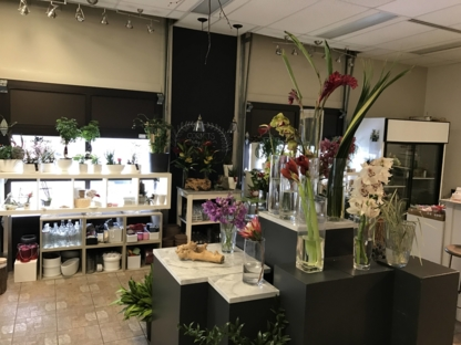 Fleurs ILLICO - Florists & Flower Shops - 819-378-0441