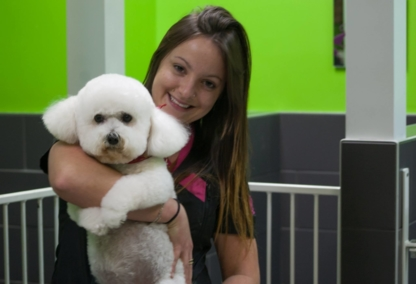 Au Maître Chien - Pet Grooming, Clipping & Washing - 450-923-2336