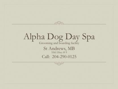 Alpha Dog Day Spa - Toilettage et tonte d'animaux domestiques
