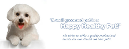 Glamorous Pets - Pet Grooming, Clipping & Washing - 519-421-1100