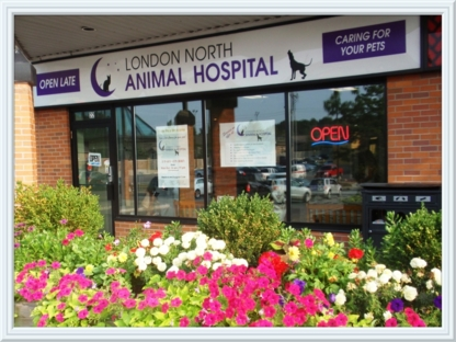 London North Animal Hospital - Hôpitaux et centres hospitaliers - 519-601-8387