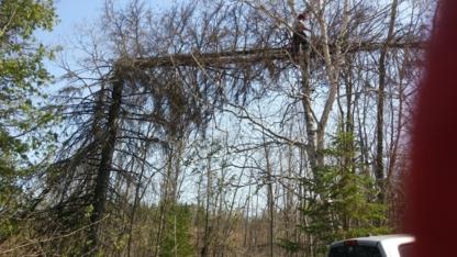Croft Tree Experts - Tree Service - 613-883-5611