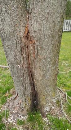 Émondage Félix Burelle - Service d'entretien d'arbres