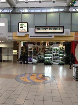 Sunny Bonsai - Florists & Flower Shops - 604-454-3863