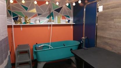 Sabrina's Pet Salon - Toilettage et tonte d'animaux domestiques - 902-410-5509