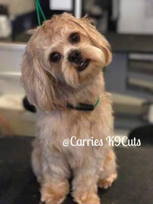 Carrie's K9 Cuts - Pet Grooming, Clipping & Washing - 519-508-7888