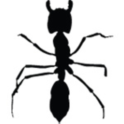 Optimum Services Pest Control - Pest Control Services