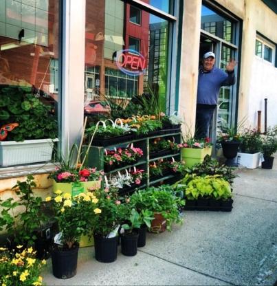 Gaze Seed Company Ltd - Gardening Equipment & Supplies - 709-722-4590