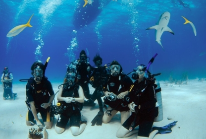 Aqua-Nuts Diving - Diving Lessons & Equipment - 403-846-3914