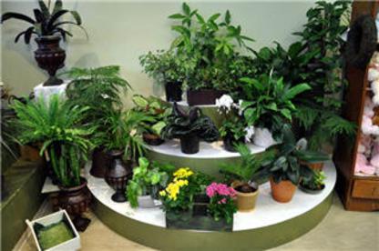 Adele-Rae Florist Ltd - Fleuristes et magasins de fleurs - 604-299-0585