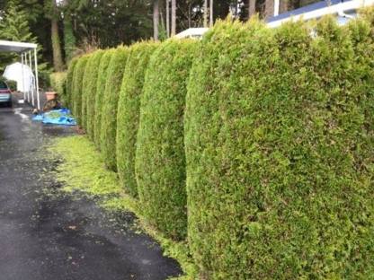 Green Side Landscape Maintenance - Landscape Contractors & Designers