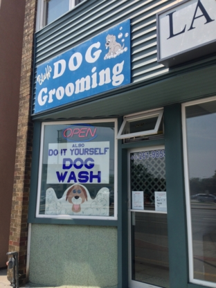 Kristy's Mutt Cutts And Care - Pet Grooming, Clipping & Washing - 416-261-9855