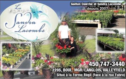 Voir le profil de Les Fleurs Sandra Lacombe - Melocheville