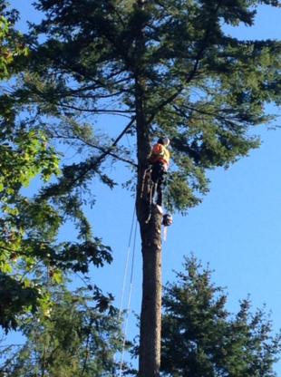 RPM Tree Service - Tree Service