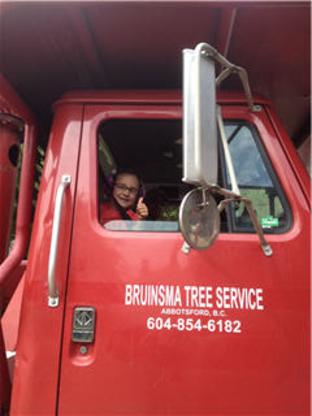 Bruinsma Tree Service - Tree Service
