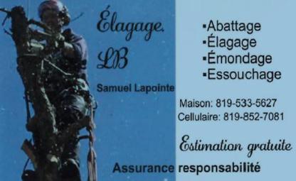 Élagage LB - Service d'entretien d'arbres - 819-533-5627