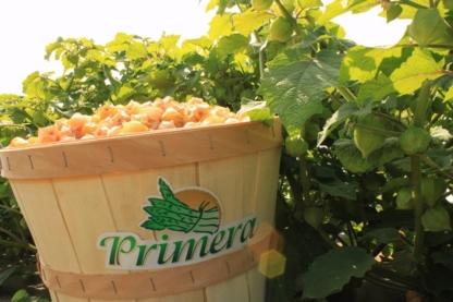 Productions Cousins Fruitiers Inc - Producteurs et distributeurs de fruits et légumes - 450-803-6261