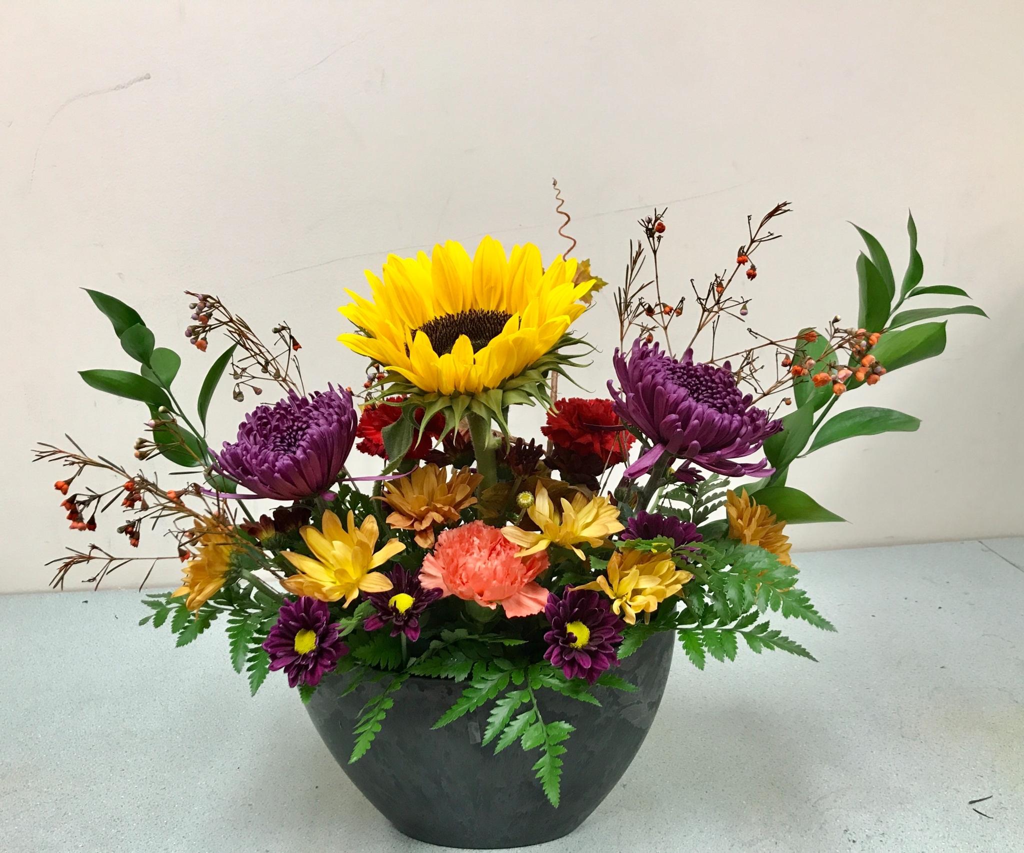 Glas florist ltd opening hours 1300 carling ave ottawa on izmirmasajfo Gallery