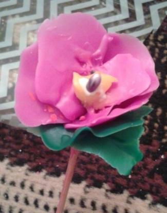 Johnny's Wax Florals - Fleuristes et magasins de fleurs - 403-617-1469