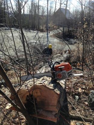 Vert-Tige Arboriculture - Pépinières et arboriculteurs