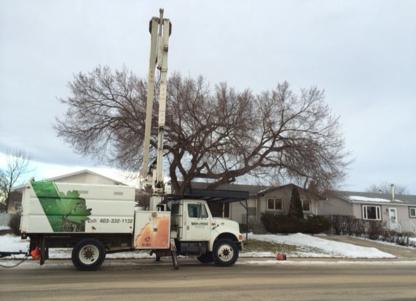 Dandyman Tree Service - Service d'entretien d'arbres - 403-332-1132