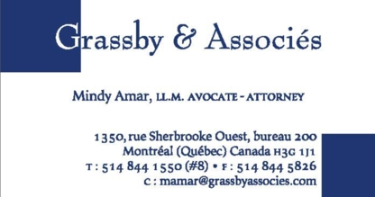 Mindy Amar Grassby & Associés - Family Lawyers