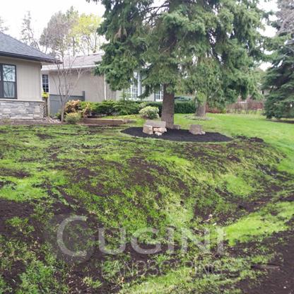 Cugini Landscaping - Landscape Contractors & Designers - 647-984-7351