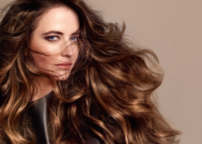 Anjuman Salon - Hair Stylists - 905-822-4040