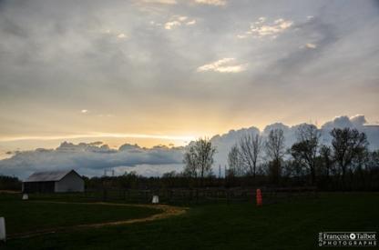 Les Écuries Les Fermes Dagenais - Farms & Ranches