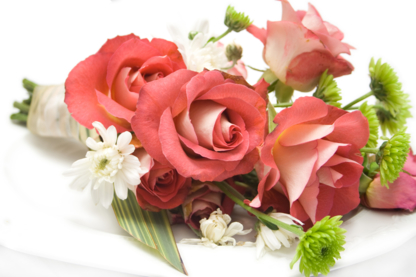 Blooms Flower Shop - Florists & Flower Shops - 519-688-0946
