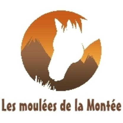 Voir le profil de Les Moulées de la Montée - Chelsea