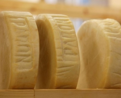 Paron Cheese Co Ltd - Cheese - 905-692-4560