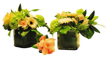 Lavender & Lilacs Florist - Florists & Flower Shops - 604-688-5936