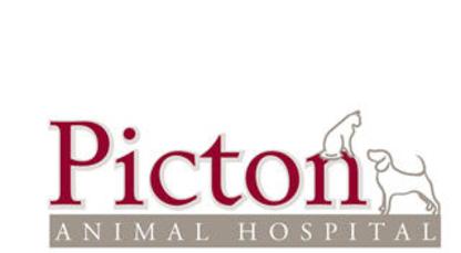 Picton Animal Hospital - Veterinarians - 613-476-6332