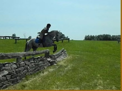 Destiny Equestrian Complex - Riding Academies - 416-566-3741
