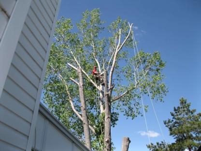 The Great Canadian Arborist - Service d'entretien d'arbres - 403-715-8658