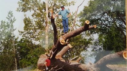 Northern Tree Service - Tree Service