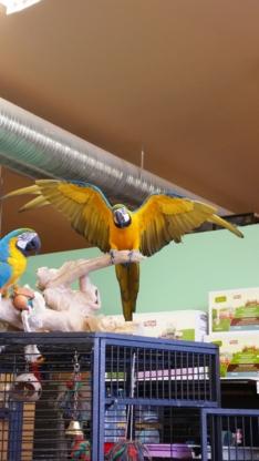 M-R-Pets - Animaleries