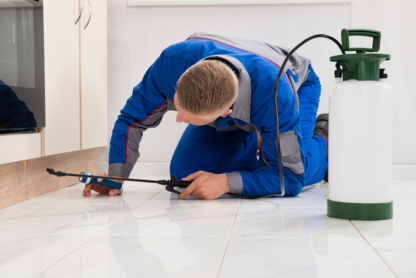 Natural Pest Solutions - Pest Control Services - 778-765-3337