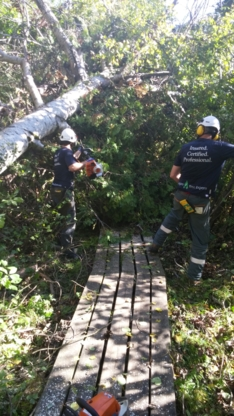 Logan Tree Experts - Tree Service - 705-657-6916