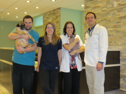 The Hamlet Veterinary Hospital - Veterinarians - 613-837-7387