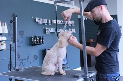 Good Karma Petspa & Doggy Day Care - Restaurants - 604-805-5310