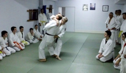 École d'Aïkido Yoseikan Budo de Gatineau - Martial Arts Lessons & Schools - 819-669-1117