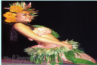 Hawaiian Pacific Magic Hawaiian Dancers - Family Entertainment