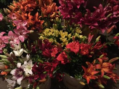 Fleurs de mon Jardin et des Champs - Fleuristes et magasins de fleurs - 450-247-3539